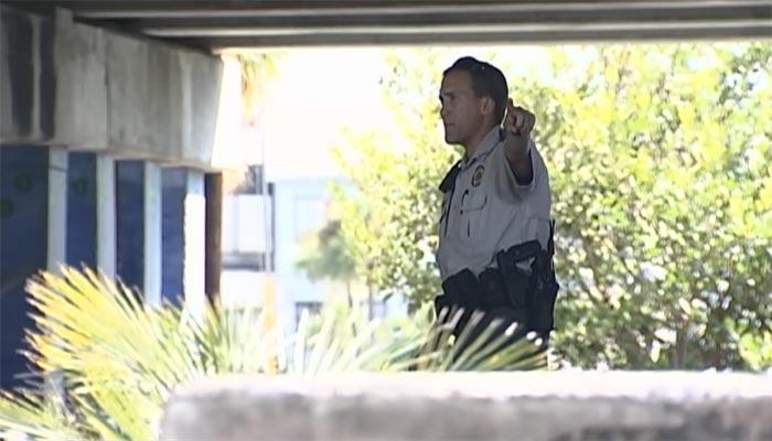 Alligator Attacks Homeless Man in Florida