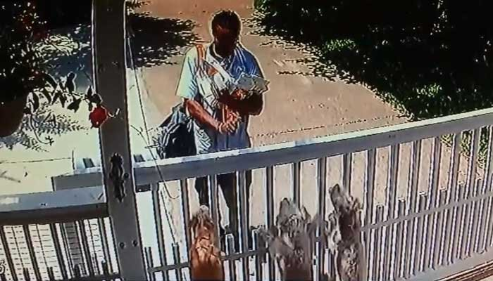 In surveillance video, a postman can be seen spraying three small dogs - behind a locked gate, on the other side of the mailbox - with pepper spray. (Source: KTRK/CNN)
