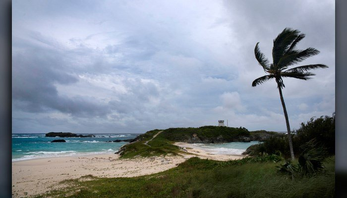 Wind and surf picks up as Hurricane Nicole approaches the Cooper's Island Nature Reserve in St. Georges, Bermuda, Oct. 12. Hurricane Nicole is cited as the reason a giant sea creature was caught by a charter company over the weekend. (AP Photo/Mark Tatem)