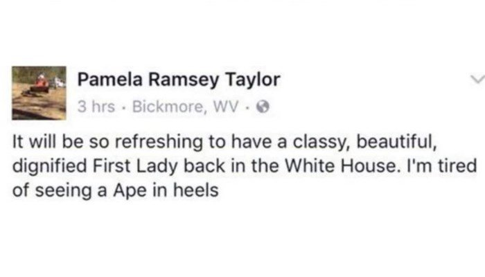 'Ape in heels': Officials under fire after racist comments about Michelle Obama