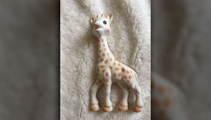 'Sophie the Giraffe' creator Vulli said that saliva likely was not responsible for the growth of black mold inside the toy. (Source: Raycom Media)