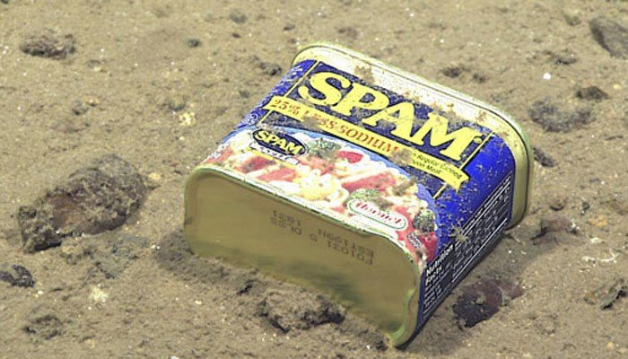 A can of spam was found in one of the deepest part of the ocean. (Source: NOAA Office of Ocean Exploration and Research, 2016 Deepwater Exploration of the Marianas)
