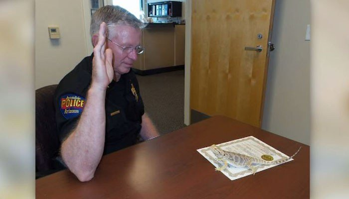 Arizona police department swears in bearded dragon