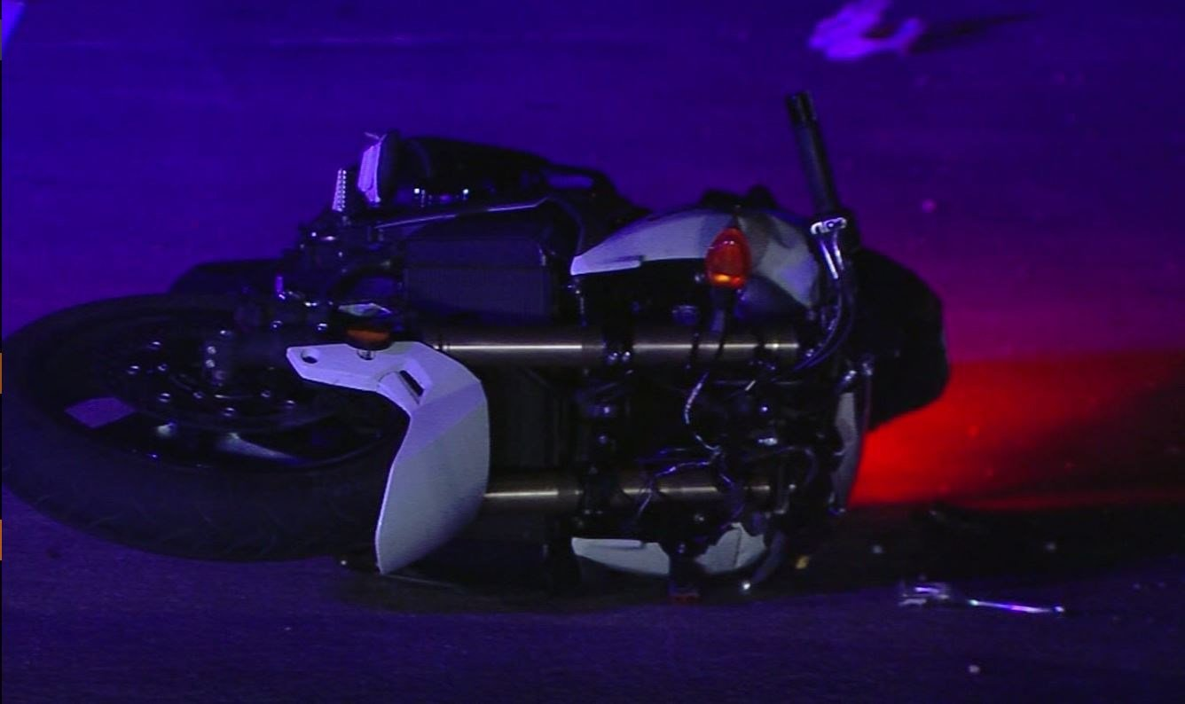 A man who collided with a giant alligator was thrown from his motorcycle. (Source: WFTS/CNN)