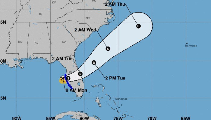 Surprise! Tropical Storm Emily has formed in the Gulf of Mexico. (Source: NHC)