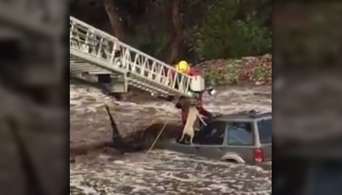 The Fremont County, CO, Sheriff's Office posted video of the daring save on its Facebook page late Sunday. The man had parked his SUV in a dry creek bed, but it quickly became flooded by severe rain. (Source: Fremont Co. Sheriff's Office/Facebook)