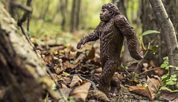Bigfoot. (Source: Pixabay)