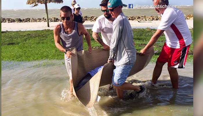 Neighbors in Marco Island rescued a dolphin who washed up in a front yard. (Source: Bruce Kretschmer/Facebook/CNN)