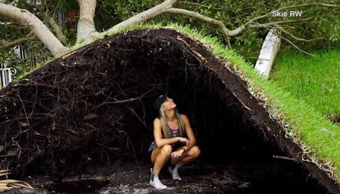 A woman in Tampa kneels under a lawn after it was pulled up by a tree falling in high Irma winds.  (Source: Skie RW/CNN)