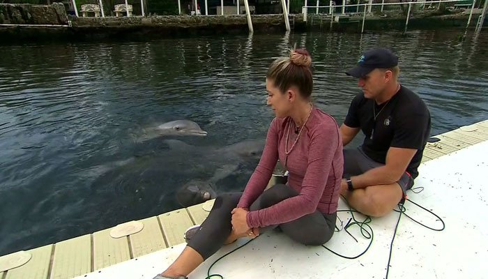 A couple in Key West showed tremendous bravery during the storm, staying behind to protect eight dolphins at the Island Dolphin Care facility they run. (Source: Admire Family/CNN)