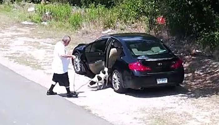 A man coaxes a dog out of a vehicle and then leave it on the side of the road. (Source: SCPA of Texas/Facebook)