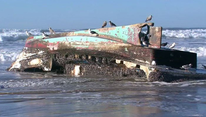 This barnacle-covered boat from the 2011 Japanese tsunami washed up on the Oregon shore. (Source: KOIN/CNN)