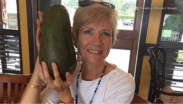 Pamela Wang stumbled upon a giant avocado weighing more than five pounds during a morning walk in Hawaii. (Source: Pamela Bryant Wang/CNN)