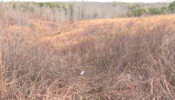 Authorities said their car went down a ravine after the gas pedal got stuck last week. (Source: WSLS/CNN)