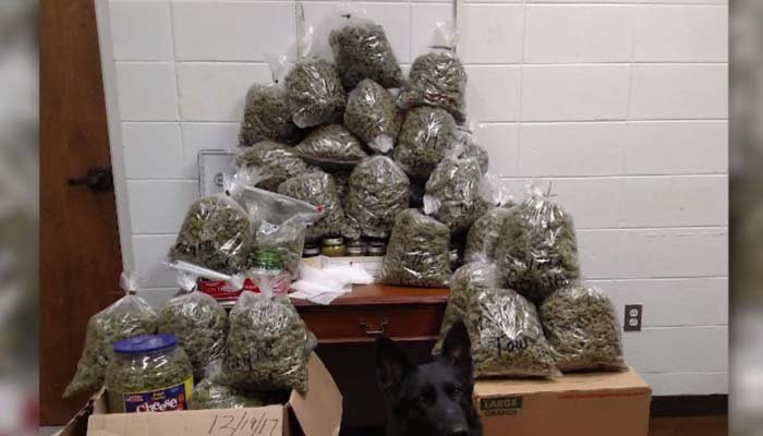 Christmas gifts? That's quite a haul. (Source: York County Sheriff's Office via CNN)