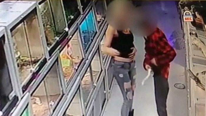 A rare python from a pet store wasn't pleased about being stuffed down a man's shirt, and it tried to slither its way out. The woman pictured has one in her purse. (Source: Custom Creature/KNXV/CNN)
