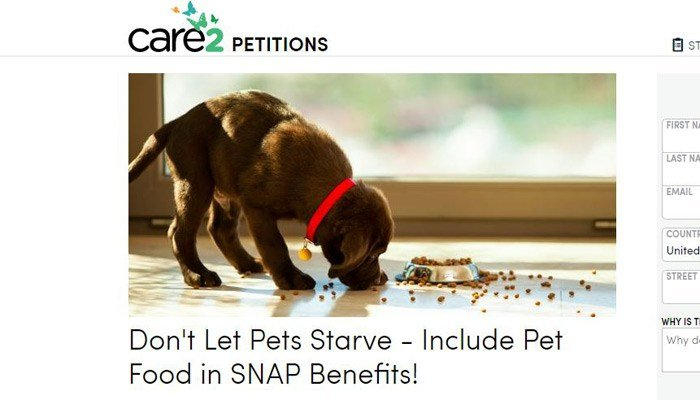 An online petition asks that the federal government treat family pets like member of the family and allow food stamps. (Source: Care2.com)