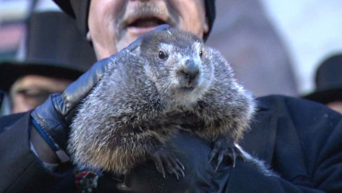 The famous meteorologist says winter is here for six more weeks. (Source: Pennsylvania Cable Network/CNN)