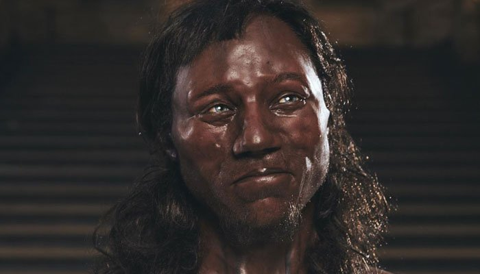 Model makers used data extracted by researchers from Cheddar Man's skull. (Source: UCL/Channel 4)