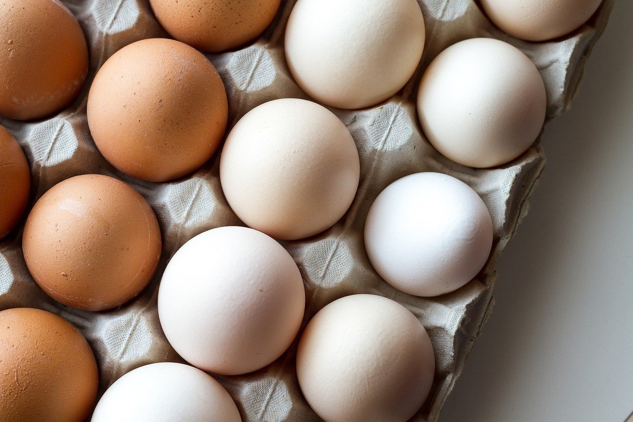 Millions Of Eggs Recalled Over Possible Salmonella Contamination