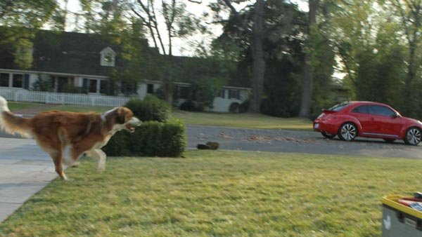 A dog named Bolt chases a red Volkswagen in a preview still of a 2012 Super Bowl commercial with a Star Wars theme. Why is Bolt chasing the car? You'll have to tune in to find out. (Source: Volkswagen America, Inc.)