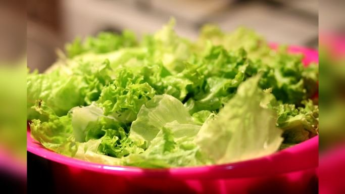 Although the USDA says no illnesses have been reported yet due to the salad and wrap recall, it's possible that some people may have been infected and don't yet realize it. (Source: Pixabay, File)