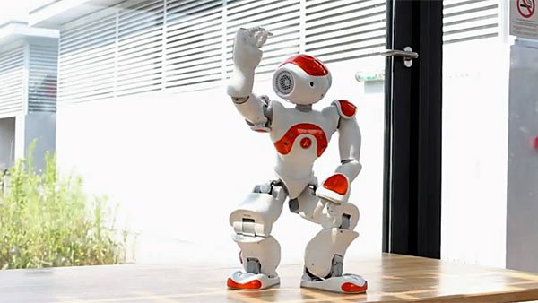 This robot has more moves than you'll ever dream of. But don't worry - it'll be decades before they take over the planet. (Source: YouTube)