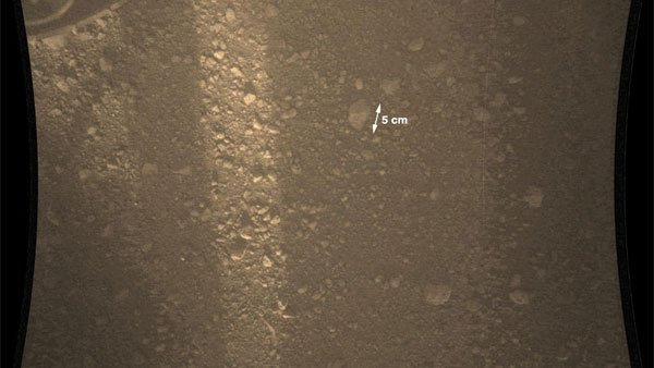 A close up image of the surface shows tan sands and rocks scattering the surface of the Red Planet. (Source: NASA/JPL-Caltech/MSSS)