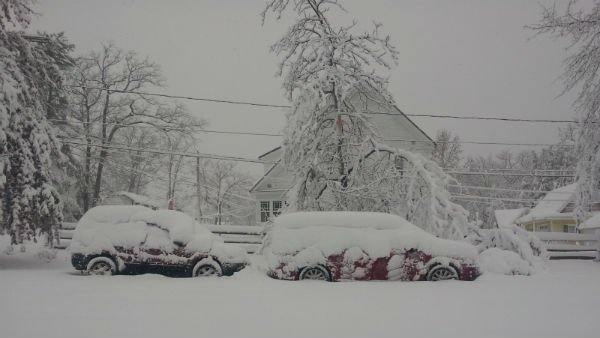 More than 20 inches of snow fell in Mountain lake Park, MD. (Source: Tracy Givens)