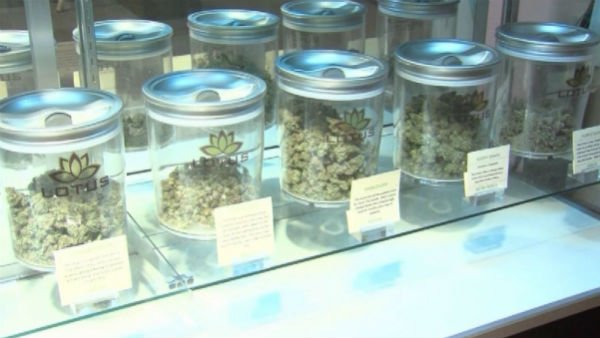 Marijuana will be legal and available at licensed retailers in Colorado and Washington. (Source: CNN)