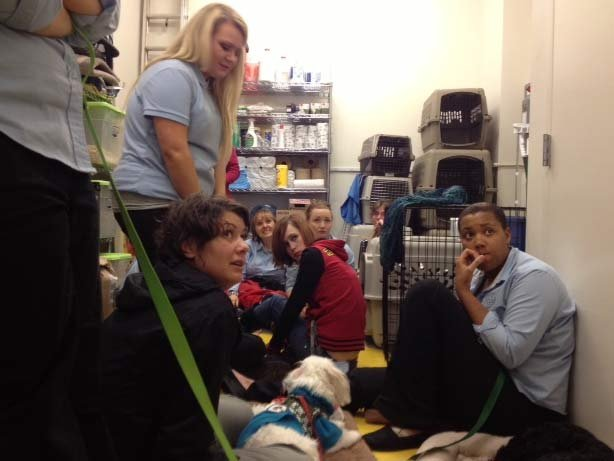 A group huddles in the back room of a pet store at Clackamas Town Center after Tuesday's shooting. (Source: KPTV)
