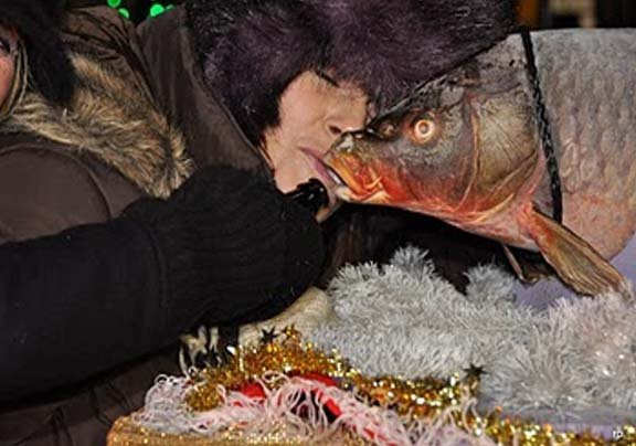 Prairie du Chien, WI, drops a carp named 'Lucky' to ring in the new year, and folks can kiss it for good luck. (Source: droppingofthecarp.blogspot.com)