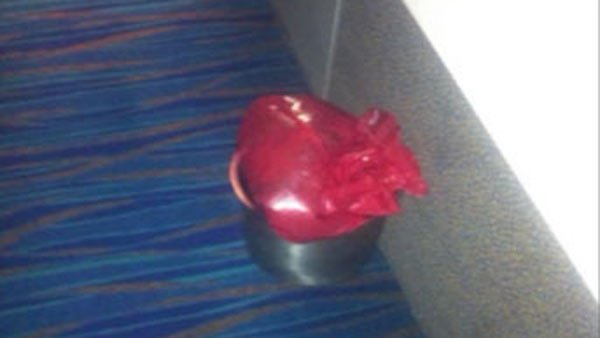 An example of the conditions aboard the Carnival Triumph, a passenger took a photo of the red bags passengers relieved themselves in. (Source: Donna Gutzman/CNN)