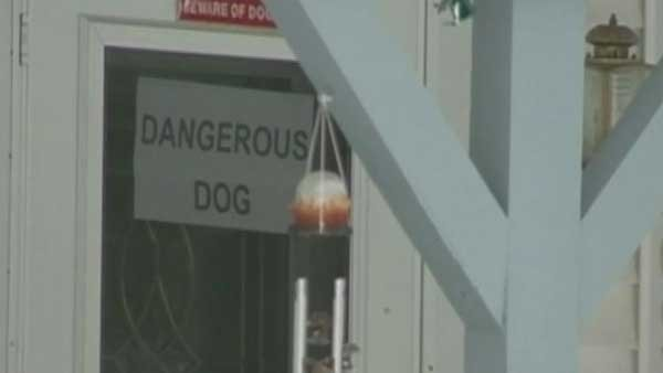 A dog in Appleton, WI, has been declared a danger to the city and its owner has a month to find it a new home outside the city. (Source; CNN)