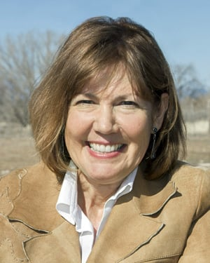 Rep. Ann Kirkpatrick (AZ-1) (Source: Office of Rep. Ann Kirkpatrick)