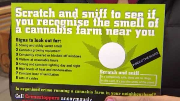 Cannabis scented cards are being distributed in London to help witnesses identify possible urban pot farms. (Source: CNN)