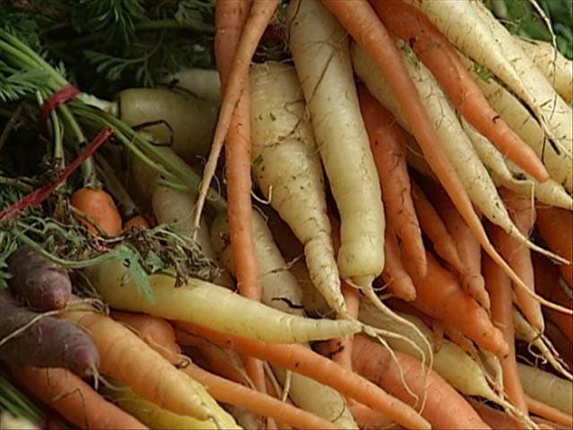 A Swedish woman found her wedding ring on a carrot in her garden. Her ring had been lost for 17 years. (Source: KXLN 45 Univision/MGN Online)