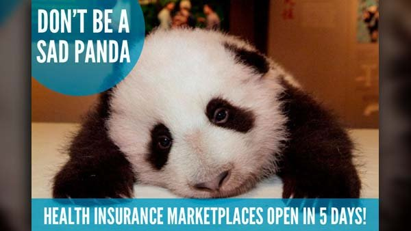 The Adorable Care Act doesn't want 'sad pandas' as the ACA marketplaces opens on Oct. 1. (Source: Adorable Care Act/Twitter)