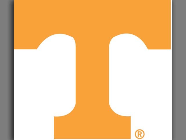 The Volunteers (3-1) are undefeated in Thompson-Boling Arena in 2013, and never lost the lead throughout the contest.