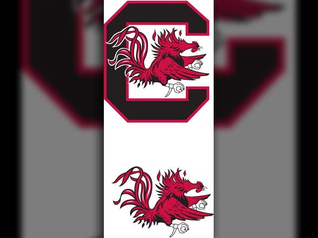 The South Carolina Gamecocks defeated the Akron Zips in a 78-45 rout in Columbia on Saturday.