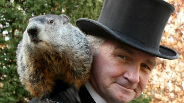 Punxsutawney Phil is the most famous of several varmints used to predict the start of spring. (Courtesy of Punxsutawney Groundhog Club)