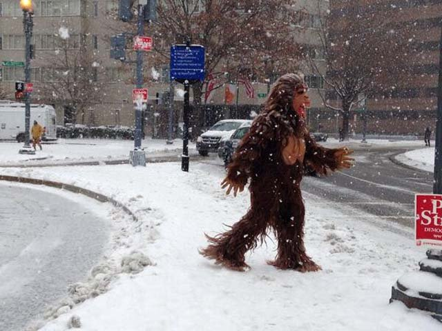 Aaron Myers found someone dressed as bigfoot enjoying the snowy weather in Washington, DC. (Source: @aronemyers/Twitter)