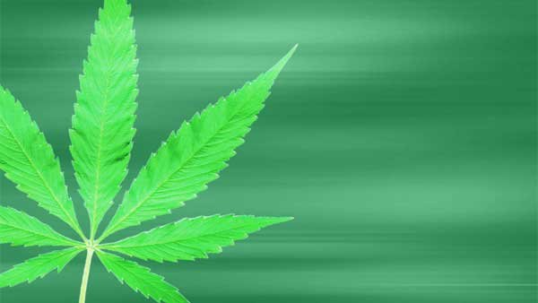 The GOP-controlled U.S. House has voted  to prevent the federal government  from stopping states from approving marijuana for medical uses. (Source: MGN Online)
