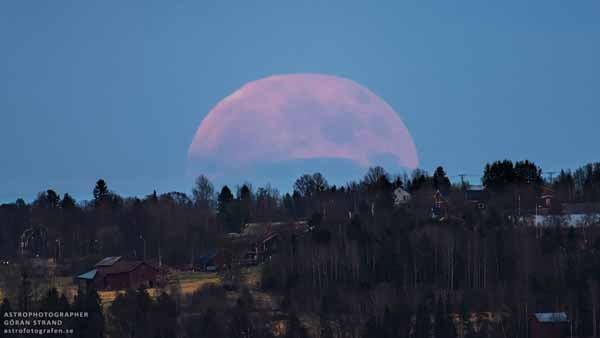 "This image shows a rose-colored moon over the Swedish town of Marieby last month. The ""honey moon"" or ""strawberry moon"" that occurs every June is named for its similar coloration. (Source: NASA)"