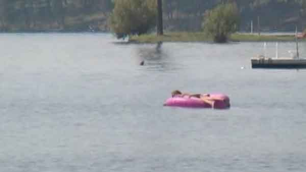 Montana Wildlife officials say two adult otters bit a child several times as he swam in a lake. (Source: KECI/CNN)
