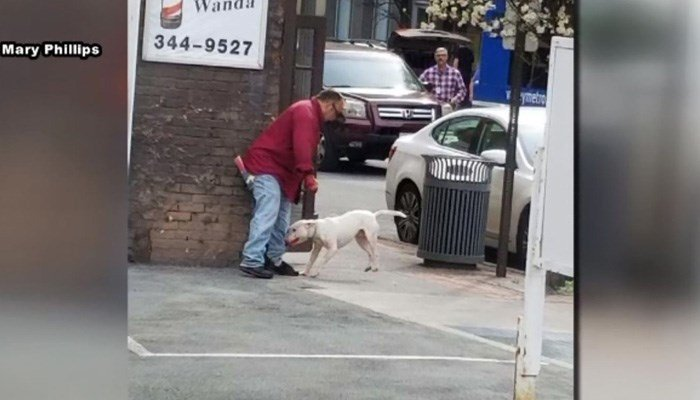 The dog had a history of attacking people and would not stop even after being pepper-sprayed. (Source: WSLS/CNN)