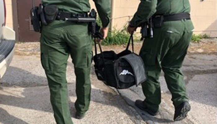 Agents: We found tiger cub in bag carried across border